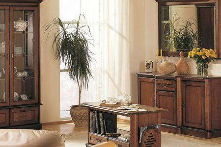 Kolekcja salon Ikar pokój dzienny meble stylowe charakteryzuje się zgrabną forma i pięknym uniwersalnym stylem